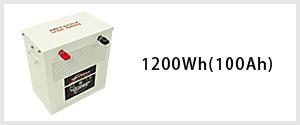 1200Wh(100Ah)